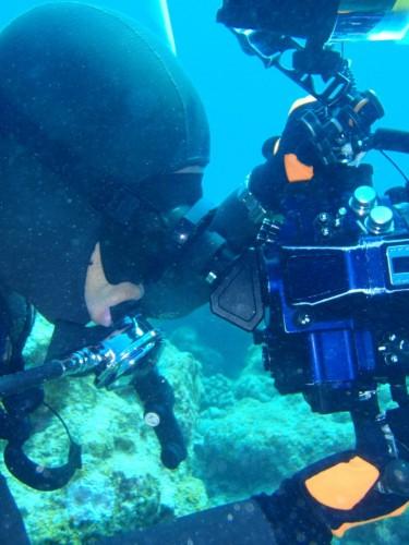 45°ビューファインダーVF45 1.2Xを使った水中撮影