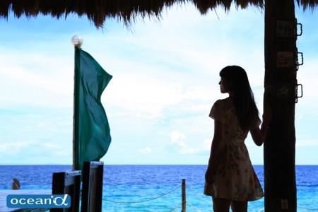 レストラン&バーから、穏やかな海を眺める。何も無い贅沢を感じる