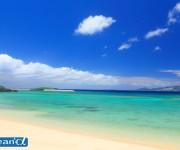 前の記事: 沖縄県民がスキューバダイビングをしない理由