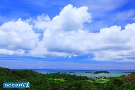 恩納村の風景(撮影:越智隆治)