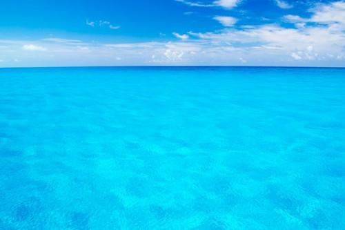 バハマの海(撮影:岡田裕介)