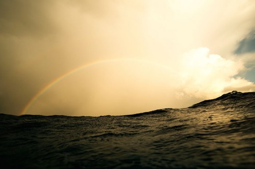 バハマの虹(撮影:岡田裕介)