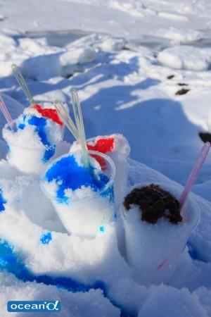 雪にシロップをかけた天然のかき氷は食べ放題!
