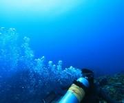 次の記事: 注意! 間違ったダイビング器材のお手入れ法