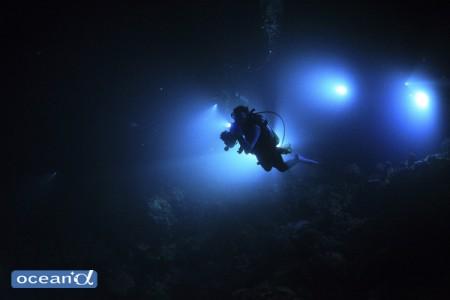 ライトが設置されればMNDの準備完了。暗やみに紛れてやってくる生き物探しの始まり