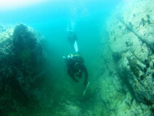 石巻のダイビング