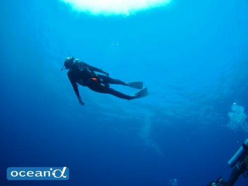 神子元島でのダイビング