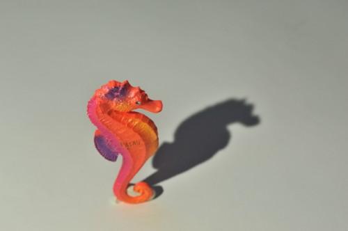 RGBlue:影がシャープに出ている