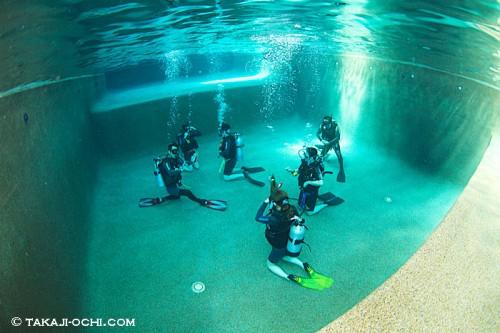 DSDDのプール施設(撮影:越智隆治)