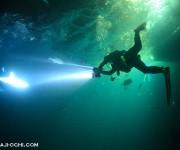 前の記事: サメとロウニンアジが眼前を飛び交う!GBRの衝撃ナイトダイビ