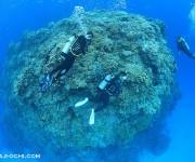 次の記事: 4日間で18本の無減圧潜水を繰り返し、夫婦そろって罹患した減
