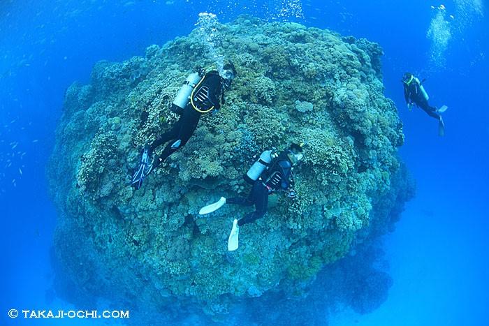 4日間で18本の無減圧潜水を繰り返し、夫婦そろって罹患した減圧症例
