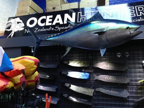 オークランドのダイビングフィン