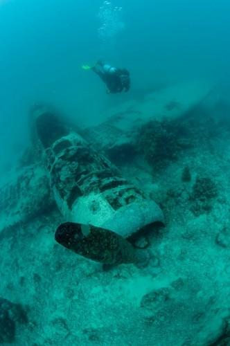 キンベ湾に沈むゼロ戦(パプアニューギニア)