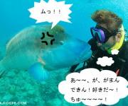 前の記事: 【水中写真4コマ漫画】寺山編集長がナポレオンにはたかれた理由
