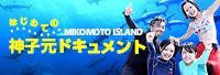 はじめての神子元ダイビング