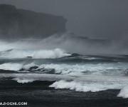 前の記事: 台風3つに囲まれてもドルフィンスイムを楽しめたわけ ~御蔵島