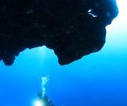 """次の記事: 宮古島の海中に潜む、""""地形のビースト""""たち"""