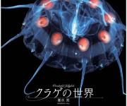 次の記事: 「クラゲの世界」に癒やされる!クラゲだらけの2014年カレン