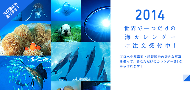 好きな写真が選べる2014カレンダー