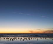 次の記事: まるで空のような水面が印象的なカルフォルニアの夕暮れ