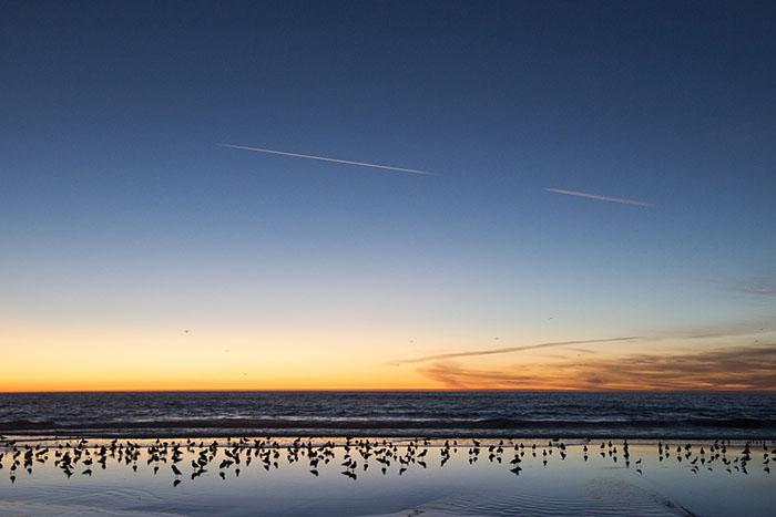 まるで空のような水面が印象的なカルフォルニアの夕暮れ