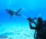 前の記事: 潜水事故が起こった時のバディやダイビングサークルの責任はどう