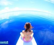 前の記事: 【アンケート】 Q.ダイバーが欲しい海の美容品は何ですか?