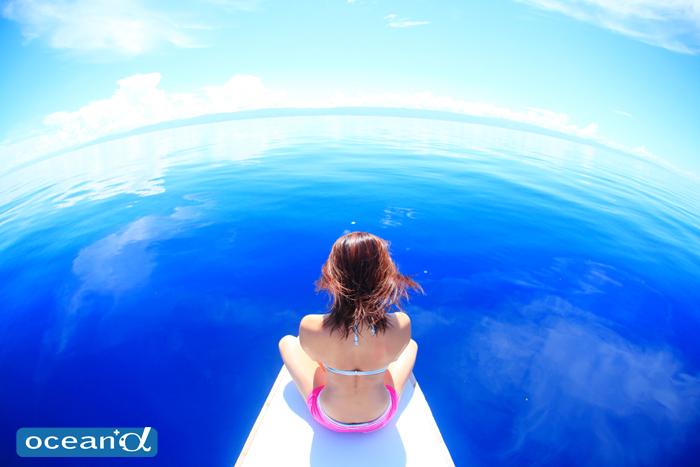 【アンケート】 Q.ダイバーが欲しい海の美容品は何ですか?