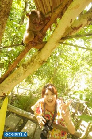 ボホールの動物園でのターシャ(撮影:越智隆治)