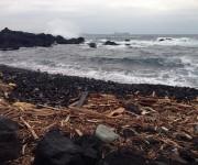 次の記事: 伊豆大島の台風と土石流から3週間。ダイビングを再開する現地の