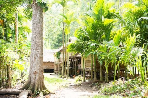 パプアニューギニアの住居(撮影:岡田裕介)