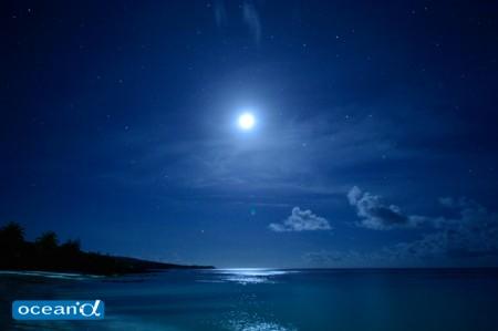 ロタ島の夜(撮影:高砂淳二)