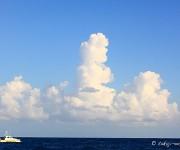 前の記事: 気象予報士がダイビング前にチェックする、お役立ちウェブサイト
