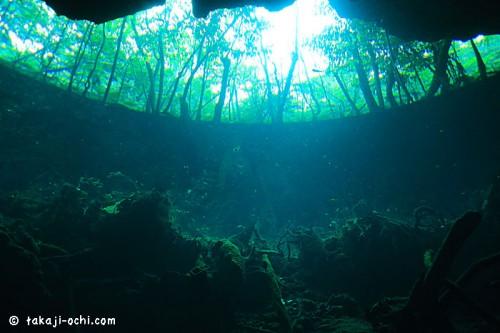 メキシコのセノーテでのダイビング(撮影:越智隆治)