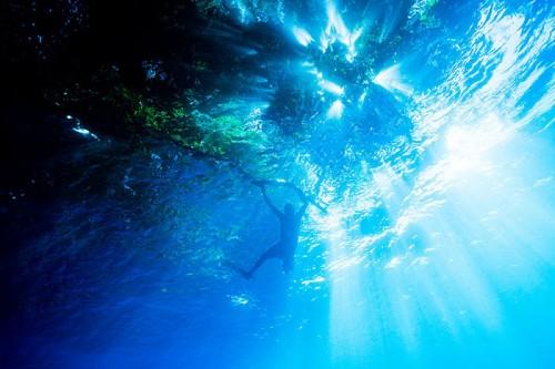 パプアニューギニアの木漏れ日の海(撮影:岡田裕介)