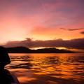 パプアニューギニアの夕焼け(撮影:岡田裕介)