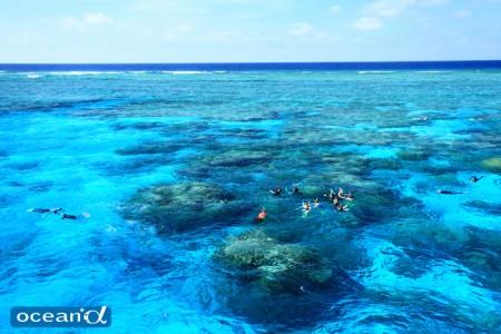 オーストラリア、GBRのサンゴ礁(撮影:越智隆治)