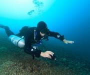 前の記事: タンクを外して楽々とエグジット可能!サイドマウントのメリット