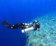 前の記事: サイドマウントは水中撮影に有効か?パラオでマクロからワイドま