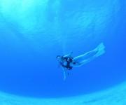 前の記事: 世界一の透明度66.5mに挑戦! ロタの透明度を測ってみた