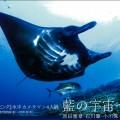 月刊マリンダイビング写真展「藍の宇宙~海」
