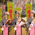 伊豆大島椿の女王