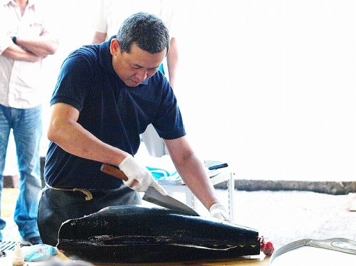 第2回串本ダイビング祭り・マグロの解体ショー