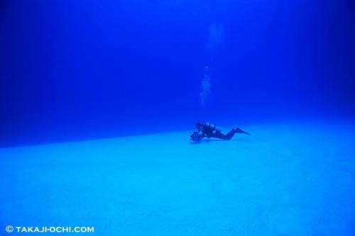 砂地で撮影するダイバー(撮影:越智隆治)