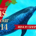 2014オーシャナクリスマスパーティーツアー