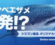 前の記事: 今年もジンベエザメ大爆発なるか!? シミランを潜るオリジナル