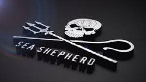 シーシェパードのロゴ