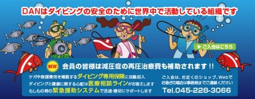 DANジャパンの広告