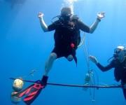 次の記事: イギリスで注目、身体障害者のためのダイビング「デプセラピー」